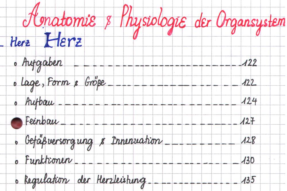 Lerntagebücher: sauber gegliedertes Inhaltsverzeichnis